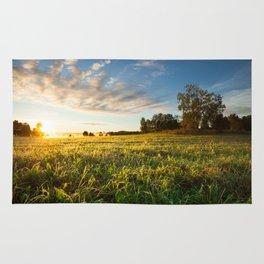 Serene landscape photo of meadow at sunrise Rug