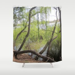 Through the willow branches Shower Curtain