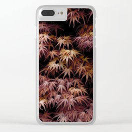 Japanese Maple, Acer Palmatum Seigen Clear iPhone Case