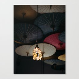 Finding Light in the Dark Canvas Print