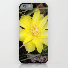 cactus flower iPhone 6s Slim Case
