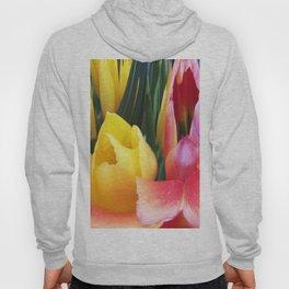 495 - Abstract Flower Design Hoody