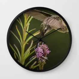 Hummingbird and deck flowers Wall Clock
