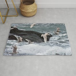 Gulls shop for Dinner Rug
