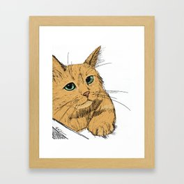 Fonda the Orange Cat Framed Art Print