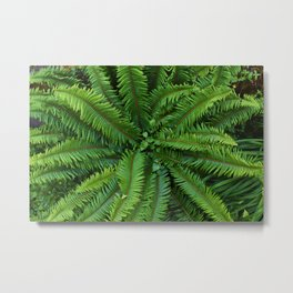 Shot in the Jungle Metal Print