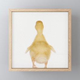 Goodbye Ducky Framed Mini Art Print