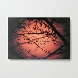 Sunset... Metal Print
