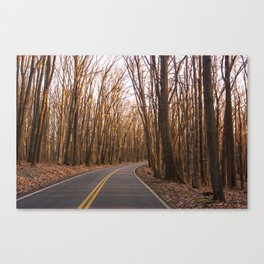 Road to Cooper's Canvas Print