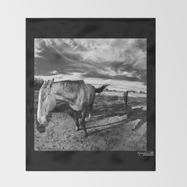 Farm Horse Throw Blanket