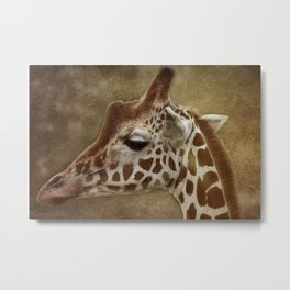 Its all in a Glance Metal Print