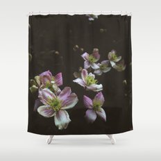 A trail of flowers Shower Curtain