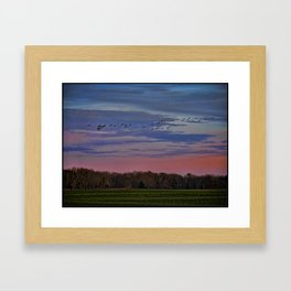 Geese Flying Over The Turf Farm Framed Art Print