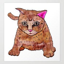 Cat At Play Art Print