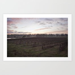 Barossa Valley Sunrise Art Print