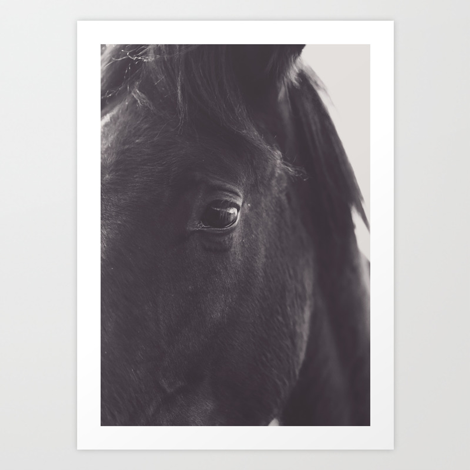 Original Wild Horses Photo Nature Landscape Animal Lovers Love Black White Photography Horse Art Print By Stefanoreves Society6