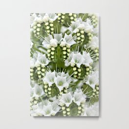 White petals like Snowfall Metal Print