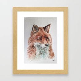 Red Fox Watercolor Painting  Framed Art Print