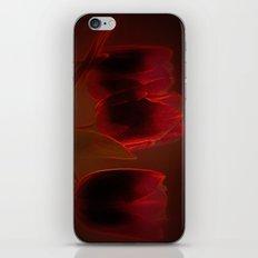 Rote Tulpen iPhone & iPod Skin