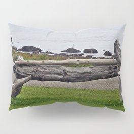 Driftwood Fence and the Sea Pillow Sham