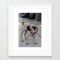 patriotic Framed Art Prints featuring Patriotic Pug by ArtByRobin