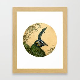Green Peafowl Head Framed Art Print
