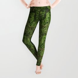 Don't Go Down To The Woods Today... Leggings