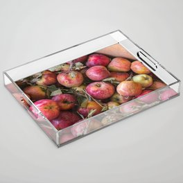 Pile of freshly picked organic farm apples with imperfections Acrylic Tray