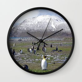 King Penguin Colony Wall Clock