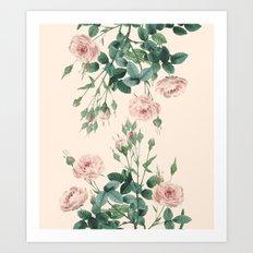The Rose Garden Pink Art Print