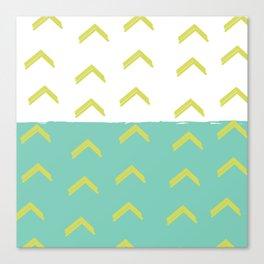 Arrow Heads Canvas Print