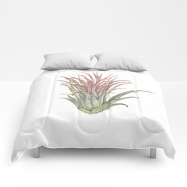 Airplant Comforters