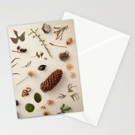 Botaic Party 01 Stationery Cards
