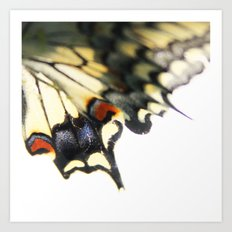 Butterfly Wing Art Print