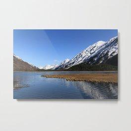 Tern Lake Metal Print