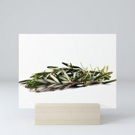 Rosemary Mini Art Print
