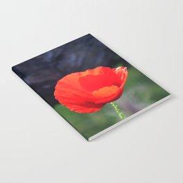 Poppy Flower Notebook