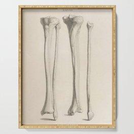 Anatomical Bones Serving Tray