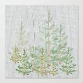 Pine forest on weathered wood Canvas Print