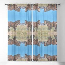 Wild_Horses 0163 - Nevada Sheer Curtain