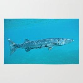 Barracuda Rug