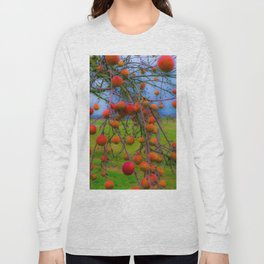 Winter apples - soft design Long Sleeve T-shirt