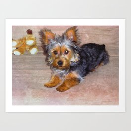 Silky Terrier Puppy - rendered as watercolor Art Print