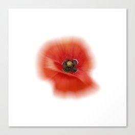 poppy zoom IX Canvas Print