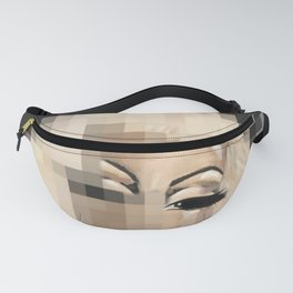 Downloading Icon Fanny Pack