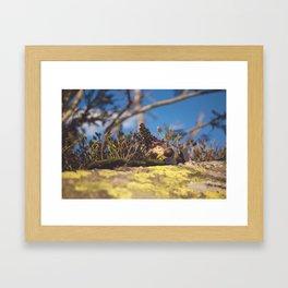 Wood Elf II Framed Art Print