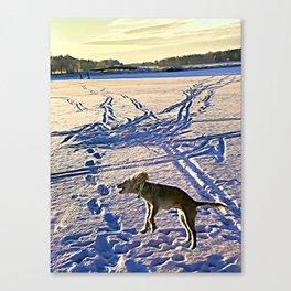 Wilma jump Canvas Print