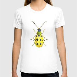 Spotted Cucumber Beetle T-shirt