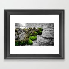 Isolated in a Monochrome Sea Framed Art Print