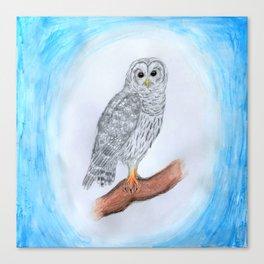 Friendly Grey Owl Canvas Print